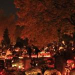 Jak przetrwać grobbing – krótki poradnik