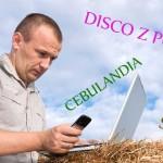 Tomasz Niecik, disco polo ihejt – czyli co słychać wCebulandii?